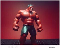 Red Hulk - Marvel Heroes (Gui Lopes BH) Tags: red classic alex toys ross general action bruce banner collection planet hulk custom figurine marvel figures miniaturas coleção swamy eaglemoss guilopesbh