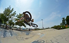 Carter With A Tabletop (Braden Bygrave) Tags: sunset summer sun table cool nikon bmx fisheye skatepark tabletop nohands kitchner 18140mm