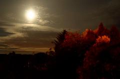 Artificial and natural. (timbo on the hill) Tags: longexposure light summer sky cloud moon wales night dark nikon streetlight dxo moonlight wrexham northwales d7000