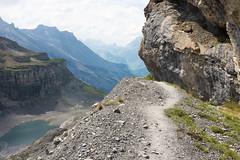 Brentrek (dwilhelm) Tags: switzerland bernese hohtrli oberland blmlisalp griesalp oeschinen brentrek