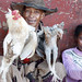 Chickens for Sale, Madagascar