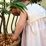 Robe Fripouille plumetis thumbnail