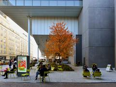 Lothlórien (Eddie C3) Tags: newyorkcity manhattan meatpackingdistrict trees whitneymuseumofamericanart streetscenes autumncolor