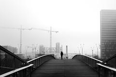 A winter day (pascalcolin1) Tags: paris13 bnf brouillard fog homme man grues crane passerelles footbridge photoderue streetview urbanarte noiretblanc blackandwhite photopascalcolin