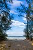 (nchoanglan94) Tags: landscape sea beach tree sand outdoor blue sky wave trail cloud