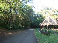 Parque La Llovizna (Wguayana) Tags: venezuela guayana puerto ordaz san félix macagua llovizna park parque nature tropical latin road sendero camino trail choza churuata hut