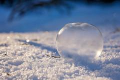frozen bubble (Sabinche) Tags: frozenbubble bubble soapbubble outdoor winter snow ice frozen light blue white round