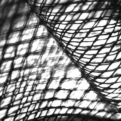 XXXXXxxxXXxxxx | fine-mesh (vertblu) Tags: mesh finemesh net bw macromode macro macromondays hmm dof blackwhite diagonal pattern patterned patterning vertblu 500x500 bsquare kwadrat abstract abstrakt abstraction mono simple graphic graphical
