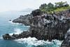 Jeju Island (Sonja Jean) Tags: tour columns korea jeju rockformations jejudo lavarock jejuisland jusangjeolli winktravel ollehcoasttrail