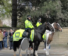 England. Oxford, protest, horses (Traveling with Simone) Tags: oxford uk england police mounted horses protest outdoor street people uniform gens
