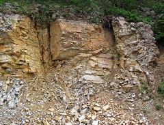 Baraboo Quartzite (upper Paleoproterozoic, ~1.7 Ga; Rt. 12 roadcut, South Range, Baraboo Ranges, Wisconsin, USA) 3 (James St. John) Tags: wisconsin range quartzite baraboo precambrian bluffview paleoproterozoic proterozoic