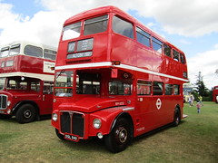 DSL 540 (markkirk85) Tags: park new bus london ex buses day 33 rally transport royal running routemaster alton dsl 540 aec 2015 clt 11962 rm1033 dsl540 33clt