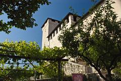 Rocca Borromea (Leandro.C) Tags: panorama monumento museo castello lagomaggiore angera roccaborromeo salestoriche museobambole