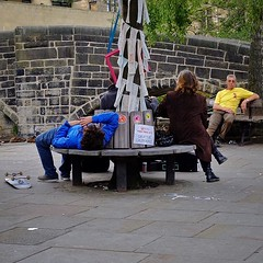 Hebden Bridge: It's That Sort of... (thephilosopherstoned) Tags: flowers pets dogs hippies candid yorkshire streetphotography documentary abandon relaxed flowerpower easygoing laidback hebdenbridge copulation doggiestyle growingwild documentaryphotography freespirits uploaded:by=flickstagram instagram:photo=1044256890728674469311672236