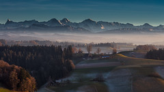 View over emmental to the bernese alps (Role Bigler) Tags: alpen alps berge berneralpen bernesealps canoneos5dsr eigermönchundjungfrau emmental herbst landschaft lueg natur nature schweiz suisse switzerland autumn fall landscape lateafternoonindecember mountains swissalps