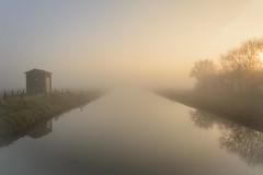 Mist-15-1 (stevefge) Tags: beuningen mist winter light glow water canal reflections reflectyourworld landscape nederland netherlands nederlandvandaag nl gelderland nature natuur