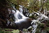 grant falls-9812 (outdoorsanytime72) Tags: ice streams winter waterfalls vancouverisland cold