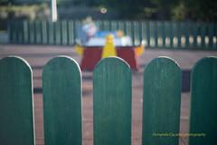 Children's park (Capturedbyhunter) Tags: fernando caçador marques fajarda coruche sorraia ribatejo santarém portugal pentax k1 revuenon 112 12 f12 55mm 55 mc parque childrens park infantil bokeh manual focus focagem foco street photography fotografia de rua outdoor