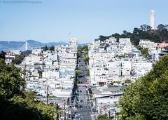 San Francisco (BrianGoPhoto) Tags: bridge coittower sanfrancisco hill street city