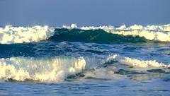 Las últimas olas del año 2016 (alfonsocarlospalencia) Tags: somo olas cantabria espuma agua azul verde despedida santander paraíso rompiente surf remolinos atardecer fuerza pleamar diciembre pureza purificación prístino