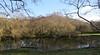 6569 Reflections in Llyn Padarn bay (Andy - Busyyyyyyyyy) Tags: 20170102 lake lll llynpadarn mmm mtsnowdon reflections rrr snow sss water www yrwyddfa