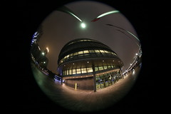 IMG_8627 (Crab2222) Tags: fisheye night evening london towerbridge trees lights blue black white wide wideangle 815mm up lookingup christmaslights christmas fromtheground