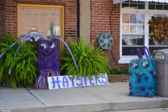 """Haysters"" (Jake (Studio 9265)) Tags: hay bale art creative display artwork country rural usa united states america todd county ky kentucky fall 2016 haysters crazy unique purple blue fern plant building downtown brick window wreath sidewalk store"