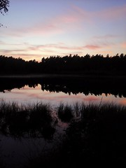 Sonnenuntergang  Sunset (DanielHiller) Tags: sonnenuntergang sunset wolken cloud himmel sky heaven see spiegelung reflektionen reflections spiegelbild moor wald forest abendstimmung evening dunkelheit schatten shadow deutschland germany soltau nikon d3100