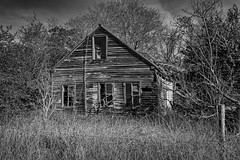 Abandoned In Cat Spring (Mike Schaffner) Tags: abandoned bw blackwhite blackandwhite catspring decay decayed derelict deserted dilapidated home house monochrome old texas unitedstates us