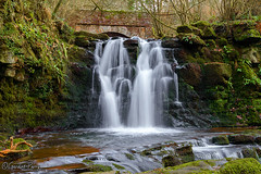 Ffrwdgrech Waterfall (parry101) Tags: south wales waterfall waterfalls landscape water outdoor falls long exposure river ffrwdgrech brecon tree trees nature naturephotography beacons national park geraint parry geraintparry