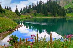 SWITZERLAND - Lioson Lake (Jacques Rollet (Little Available)) Tags: eau lac lake nature suisse nuage cloud ciel sky