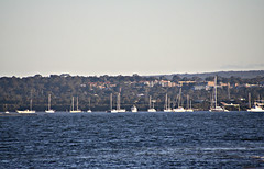 2015 Sydney: Botany Bay #15 (dominotic) Tags: beach water plane airplane boat yacht jet sydney australia nsw newsouthwales watersports tasmansea botanybay tanker sydneyairport brightonlesands portbotany 2015 penalcolony airportrunway sydneykingsfordsmithairport australianpenalsettlement