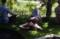 shelter from the heat (gunstreet.girl) Tags: summer film jeff sarah 35mm pentax kodak okanagan winery iain naramata laughingstock kodakgc200