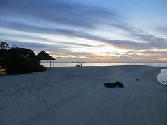 romantic_beach_dinner
