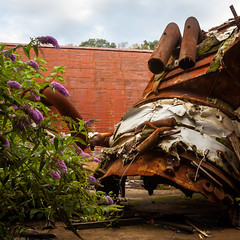 Demolition in Progress (D. Coleman Photography) Tags: abandoned new jersey paper mill company industry industrial demolition rubble rust metal scrap blight decay color flowers nature beauty dystopian urban exploring exploration ue forgotten waste dump superfund enviromental