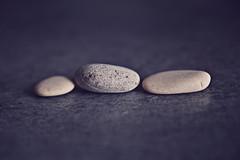 In a Row (StefPhotography_) Tags: macromondays redux2016myfavoritethemeoftheyear inarow stone vintage macro nikon