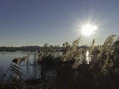 Torbiere-V-2 (elettrico1977) Tags: acqua brescia ghiaccio ice iseo italy lago lake landscape lombardia natura nature paesaggio panorama sunset torbiere tramonto water wild