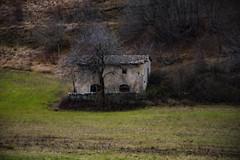 Casale Fiabesco (DarioMarulli) Tags: laquila bosco bellabruzzo abruzzo fiabe albero abandoned allaperto alberi d3200 nikon nikonclubit natura nature nationalgeographic
