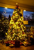 Oh Christmas tree, oh Christmas tree.... (rgreen_se) Tags: december winter season sweden yuletide christmas greetings light tree indoor holidays decorations presents merry jul ornaments happy nordic