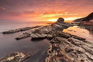 On the rocks (22731)