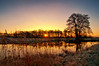 Sunrise Drentse Aa | the Netherlands (frata60) Tags: nikon d300s tokina 1224mm landscape landschap drenthe drentse aa netherlands nederland natuurgebied natuur nature sunrise zonsopgang sun zon tegenlicht water snow vorst vriezen koud koude kou cold sky