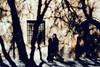 (DANG3Rphotos) Tags: street streetphotography streetphoto calle callejera shadows shadow segovia nikon d7100 nikonista dang3rphotos dang3r creative look vision style creativo imagen photo 2015 shot camera inspiration ver like this photos foto fotografia love art artist life light lights