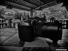Hasselblad HV (mestremur) Tags: monocrhomatic blackandwhite sonya99 sonylens sony zeisslens zeiss lenses lens camera hasselbladhv hv hasselblad