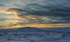 Icelandic sunrise fence - HFF! (lunaryuna) Tags: iceland southwesticeland travel journey voyage sunrise dawn winter season seasonalwonders ice snow landscape solitude fence fencefriday sky clouds cloudscape colours thelightfantastic lightmood lunaryuna