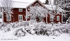 Typical Ostrobothnia Farmhouse (Timo Halonen) Tags: ostrobothnia isokylä laihia farmhouse nikon dx d5200