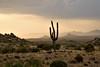 Dusty Evening (isocoleez84) Tags: arizona hiking trail thumb scottsdale toms preserve mcdowell haboob sonoron
