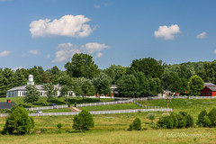 Barboursville Winery - Fences (John H Bowman) Tags: june virginia barns orangecounty 2009 redbarns canon24105l commercialbuildings barboursvillewinery june2009 fencesgates