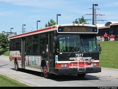 Toronto Transit Commission #7977 (vb5215's Transportation Gallery) Tags: toronto ttc 2006 transit orion commission vii
