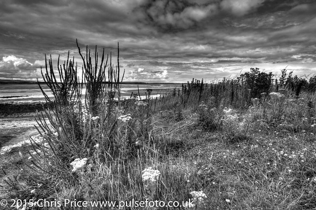 Budle Bay, Lindisfarne National Nature Reserve