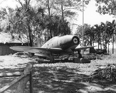 Abandoned J2M Raiden in the Philippines (1945)